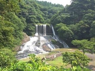 木々に囲まれた滝の写真・画像素材[3636278]