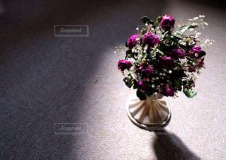 枯れた花に光の写真・画像素材[2982200]