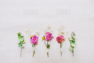 並んだ花の写真・画像素材[2982698]