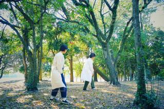 森の中を歩くふたりの写真・画像素材[3139886]