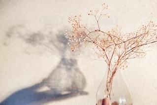 インテリア,夜,花瓶,部屋,ドライフラワー,影,手持ち,人物,灯り,壁,ポートレート,ライフスタイル,手元,夜時間