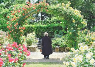 花に囲まれる女性の写真・画像素材[4334113]