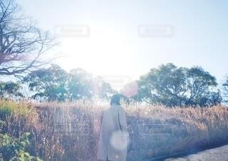 歩く女性の写真・画像素材[4815428]