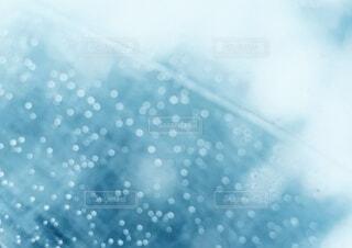 雨の日のキラキラの写真・画像素材[4842023]