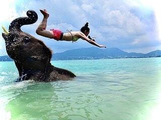 楽しそうに女性を投げ飛ばす象さんの写真・画像素材[4123033]
