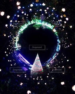 夜ライトアップされたクリスマス ツリーの写真・画像素材[915685]
