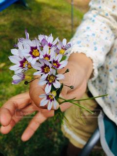 花を持つ手の写真・画像素材[2940052]