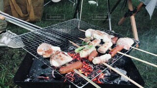 犬,食べ物,アウトドア,食事,フード,ペット,キャンプ,焼き鳥,炭火焼き,飲食