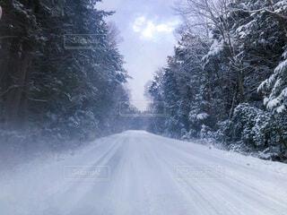 雪道の写真・画像素材[4143233]