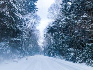 雪道の写真・画像素材[4143234]