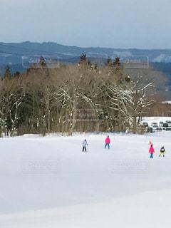 風景,アウトドア,スポーツ,雪,樹木,人物,スキー,ゲレンデ,レジャー,スキー場