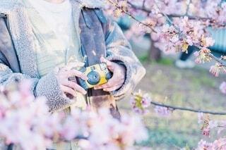 散歩にカメラの写真・画像素材[4211495]