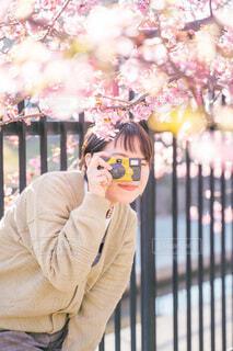 散歩にカメラの写真・画像素材[4211519]