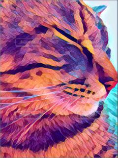 猫,動物,ペット,人物,リラックス,癒し,絵画,ネコ