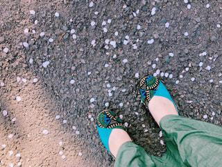 女性,1人,桜,靴,屋外,サンダル,花びら,サクラ,人,地面,アスファルト,桜の花,さくら,履物
