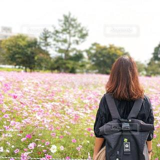 お花畑に立っているの写真・画像素材[2997687]