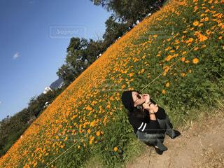 花畑の写真・画像素材[2997712]