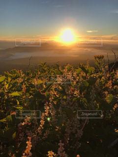 夜明けと夕方は紙一重の写真・画像素材[2997702]