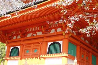 桜,屋外,寺