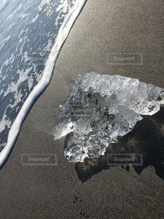 自然,海,砂浜,波,海岸,氷,氷の影