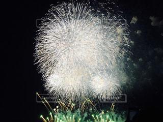 花火の写真・画像素材[167731]