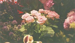 お花屋さんの写真・画像素材[1382607]