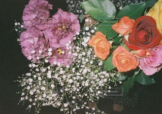 花,お花,フィルム,フィルム写真,フィルムフォト