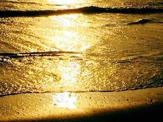 光り輝く黄金の波打ち際の写真・画像素材[3344536]