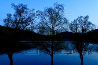 自然,風景,空,森林,屋外,湖,青,水面,樹木,草木,日中