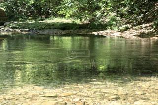 自然,屋外,湖,川,水面,池,山,景色,樹木,日中
