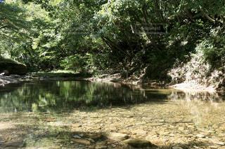 自然,風景,空,森林,屋外,湖,川,水面,池,山,景色,樹木,草木,日中