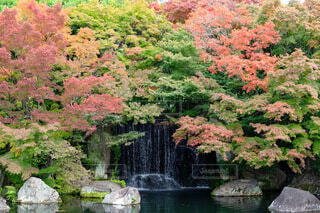 紅葉と滝の写真・画像素材[3717483]