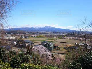 自然,風景,空,春,桜,屋外,山,春の訪れ,眺め