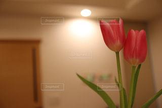 テーブルの上に花瓶の写真・画像素材[2989317]