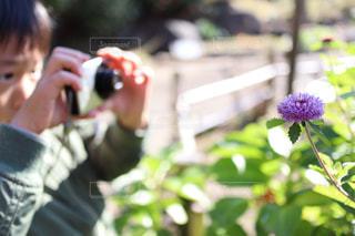 男性,子ども,1人,風景,花,屋外,人,カメラマン,カメラ好き,カメラ小僧,はじめてのカメラ