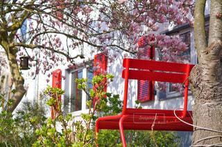 公園の大きな赤い椅子の写真・画像素材[3030706]