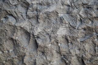 岩のクローズアップの写真・画像素材[3117922]