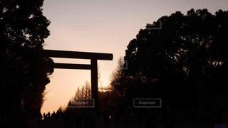 夜が迫るの写真・画像素材[2992037]