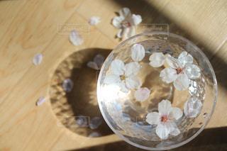 桜の花びらの写真・画像素材[3084146]