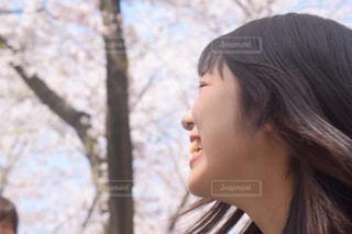 女性,友だち,風景,春,桜,お花見,笑顔,桜満開
