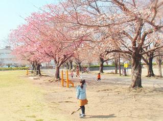 子ども,風景,空,公園,花,屋外,女の子,樹木,人,地面,履物