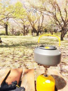 湯が温まる程の陽気の写真・画像素材[3063048]