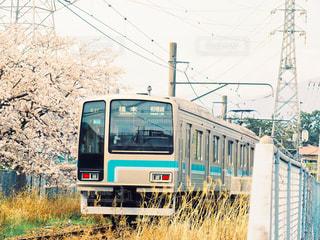 春の橋本行きの写真・画像素材[3072692]