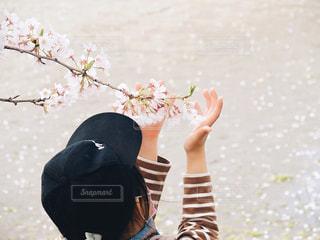 目の前に春の写真・画像素材[3072693]