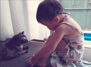猫と女の子の写真・画像素材[3035151]