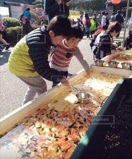 金魚すくいの写真・画像素材[3037590]