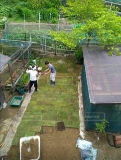 芝植えの写真・画像素材[3038138]