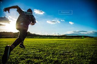 草原を駆けるの写真・画像素材[2989659]