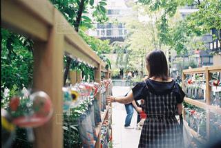 女性,1人,風景,夏,屋外,神社,カラフル,少女,樹木,風鈴,人,フィルムカメラ,風鈴祭り
