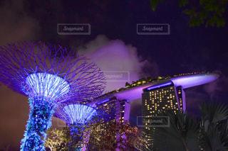 空,夜,夜景,観光,樹木,イルミネーション,旅行,旅,シンガポール